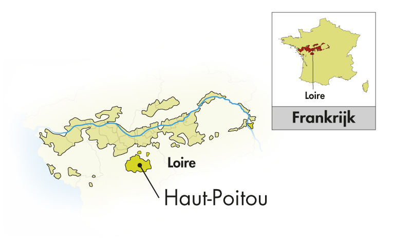 Domaine La Tour Beaumont Val de Loire Gamay