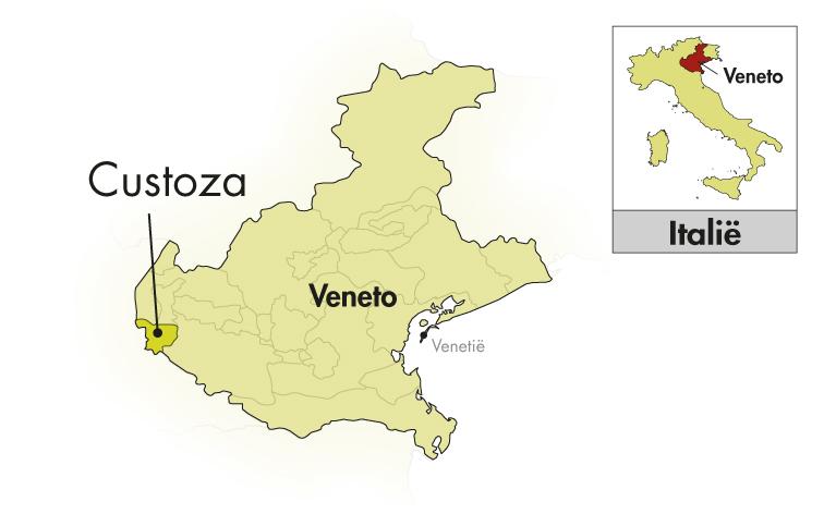 Monte del Frà Pinot Grigio delle Venezie Tosa