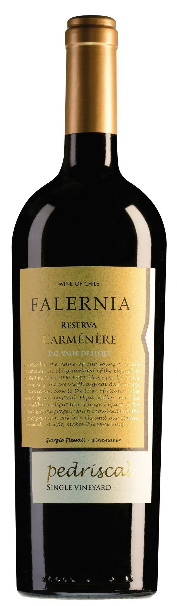 Viña Falernia Elqui Valley Pedriscal Carmenère