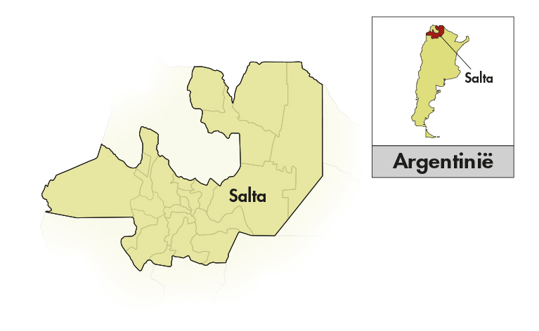 Chakana Salta Torrontés