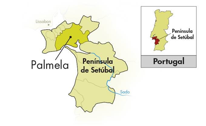 Venâncio da Costa Lima Moscatel Roxo de Sétubal Pioneiro
