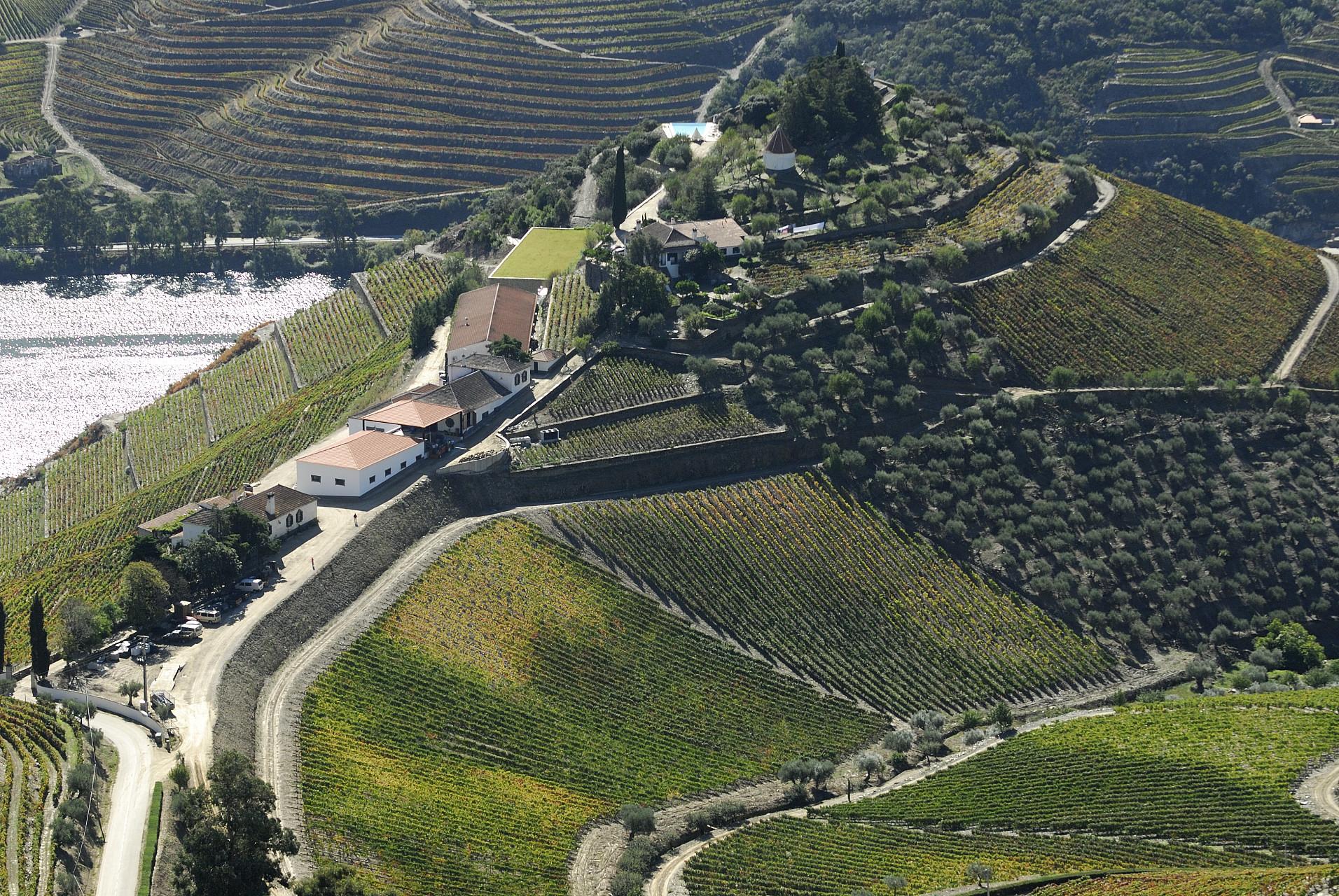 Dourovallei waar Port vandaan komt