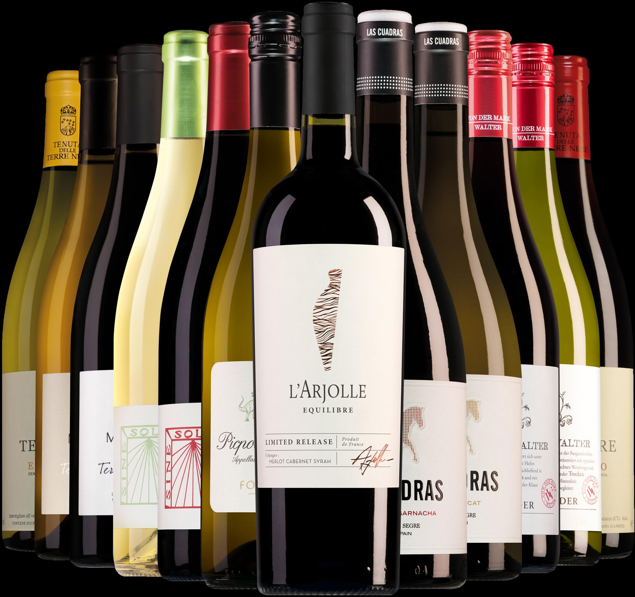 Wijnbericht september